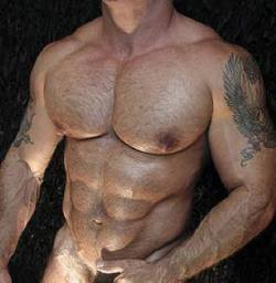 musclelover:  Huge, hairy pecs. Sexy to see and be even better to stroke. Looking for muscle to worship? Look no further than http://bit.ly/14qL0gL for all your muscle worship desires!