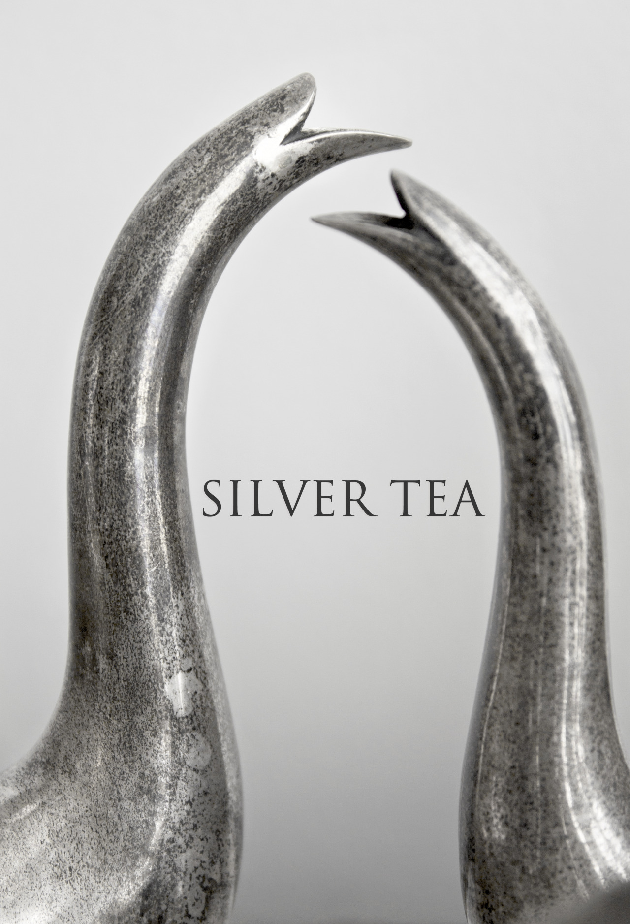 Silver Tea PH: Nicolas Cañon (Product Photography)