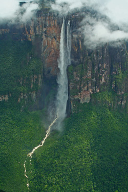 travelthisworld:  Angel Falls ♦ Gran Sabana, Bolivar, Venezuela | by Ian Lambert