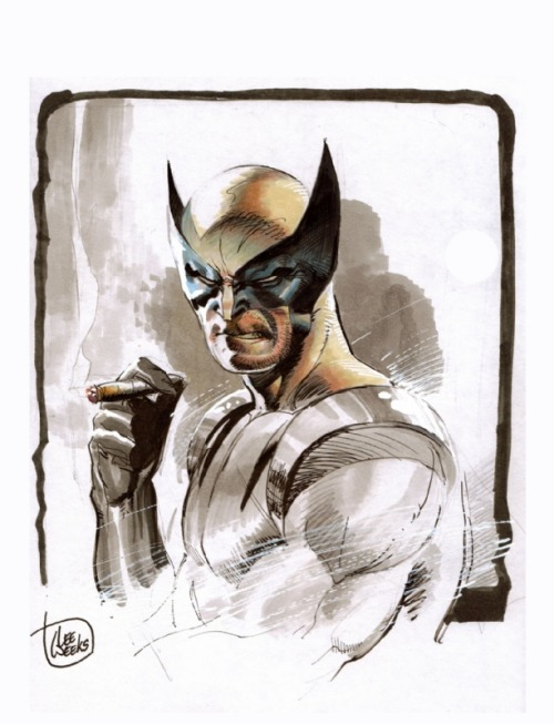 Il pin-up del giorno: Wolverine, di Lee Weeks. komicart:  Wolverine by Lee Weeks