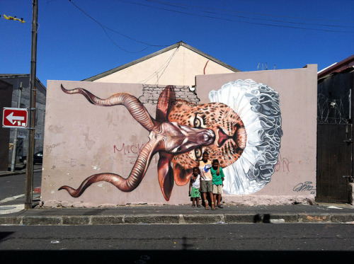 untitled by gaia.streetart on Flickr.Nice Gaia in South Africa