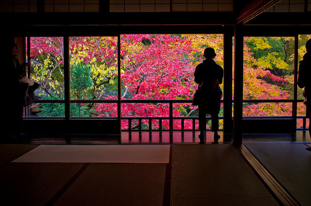 momiji '12 - autumn leaves #24 (Rurikou-in temple, Kyoto) by Marser on Flickr.