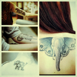 ambularr:  my favourite elephant tattoos 🐘