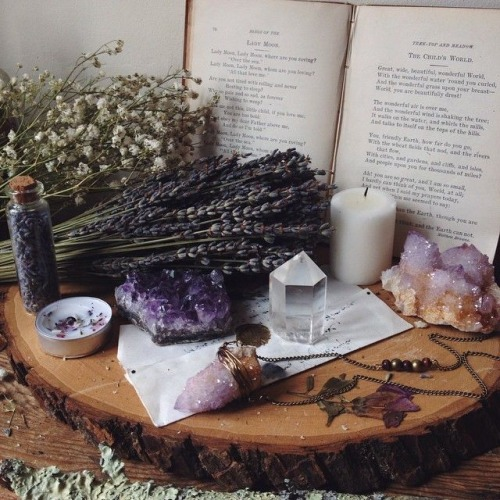Wiccan Wicca witchy witches witch magic magical spells spellbound spellwork spellbook spellcraft witchcraft little witch academia witchblr crystals healing crystals herbs spices flowers cauldron candles sfw alters moodboards Moodboard aesthetic aesthetics fortheloveofmyart pagan