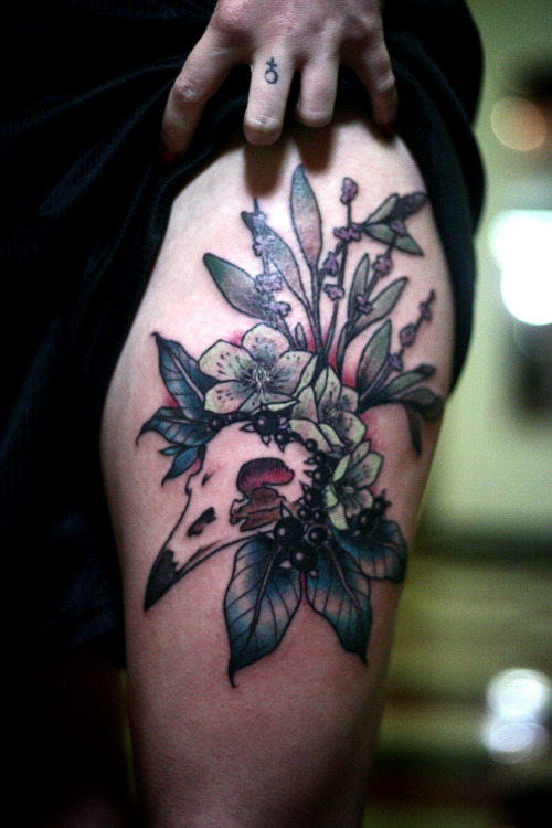 fuckyeahtattoos:  crow skull, belladonna, hellebore, and sage.  by alice carrier at anatomy tattoo in portland, oregon.