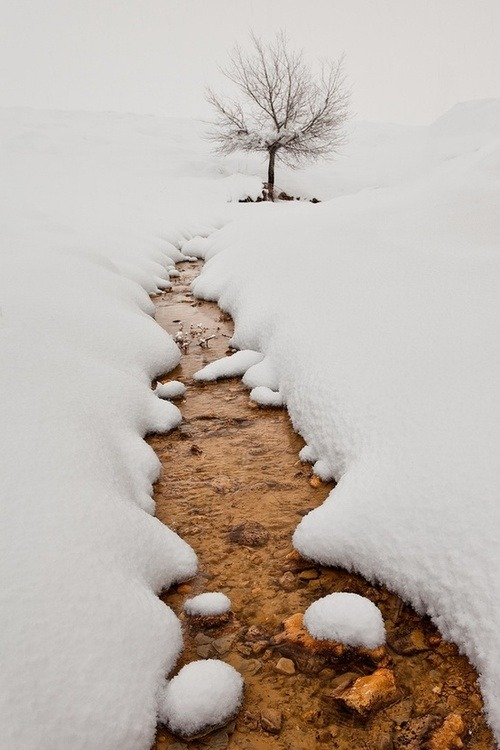 bluepueblo:  Snow Creek, Murcia, Spain photo via olga   winter is here