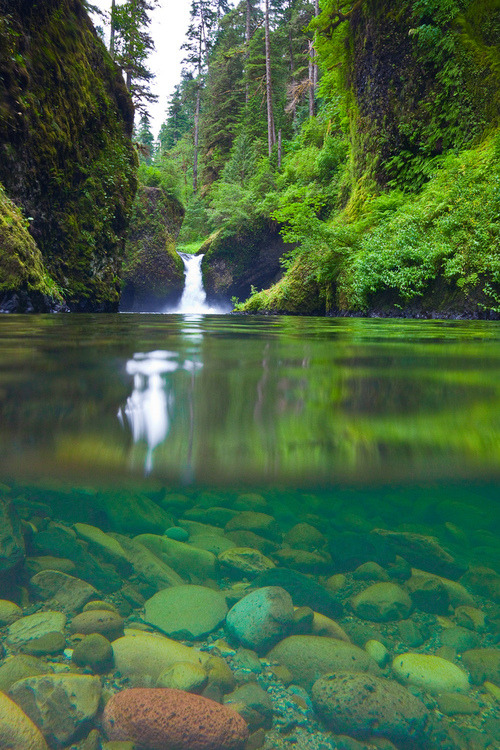 Split-View Waterfall, Oregon photo via burning
