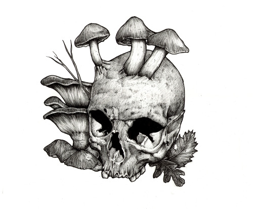 "arnaudgomet:  ""MUSHROOMS"", Avril 2013 - Ink pens on paper - © Arnaud Gomet 2013. Tumblr / Behance"