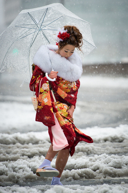 heartisbreaking:  Coming of Age day under the snow in Tokyo by balbo42 on Flickr.
