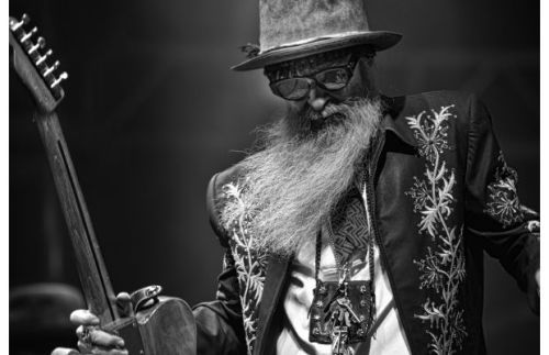 rootsnbluesfestival:  billy gibbons of zz top