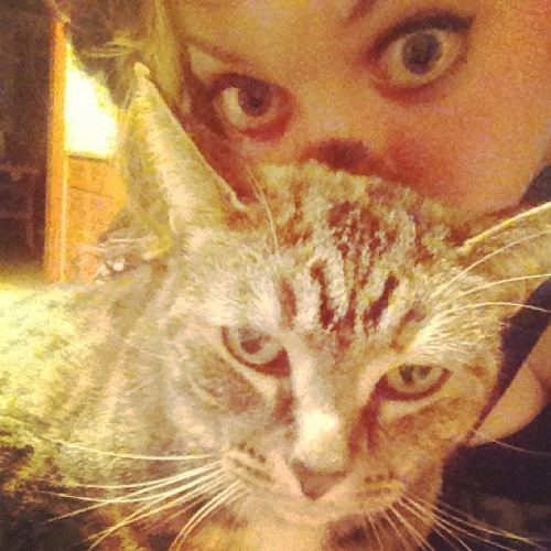 Isis pretends to hate me. #cat #catsofinstagram #isis #me #meow #eyes #loveher #kitty