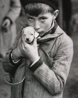 "thefourwindsart:  * Andre Kertesz * Boy Holding the Puppy (1928) * Extracts from Roland Barthes' Camera Lucida: ""He is looking at nothing; he retains within himself his love and his fear: that is the Look."""