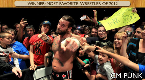 "Check out the 2012 RSPW Award results for the BEST and WORST of wrestling (as voted by fans) so you can find out the winner of the ""CM Punk Award For Excellence In Being CM Punk"" as well as some other important categories."