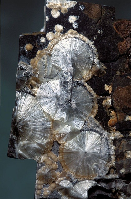 mineralists:  Wavellite High Down Quarry, UK