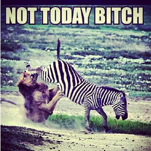 😂 #lol #funny #nottoday