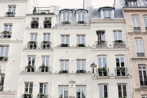 chats-fluorescents:  Hôtel Relais Saint-Germain in Paris by Paris in Four Months on Flickr.