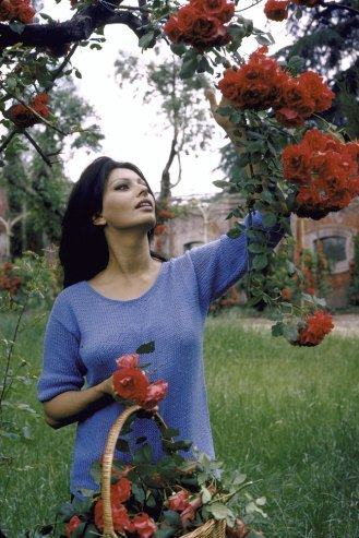 Rare Photos of Vintage Beauty Sophia Loren