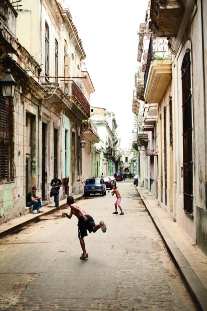 Havana found in G&G Photo: Eric Kiel