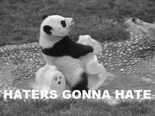 cutedancer1516:  haters  hate