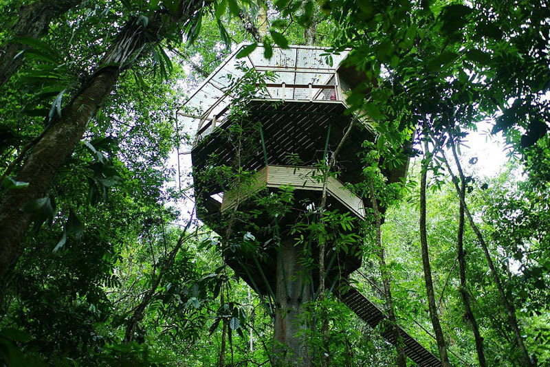 thekhooll:  Treehouse Community Finca Bellavista (FBV) is a sustainable treehouse community situated on 600 acres of land in the mountainous South Pacific coastal region of Costa Rica. FBV is the brainchild of Mateo and Erica Hogan, a married couple from Colorado who fell in love with Costa Rica.