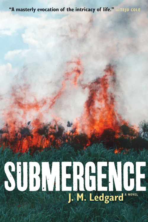 The American edition of Submergence