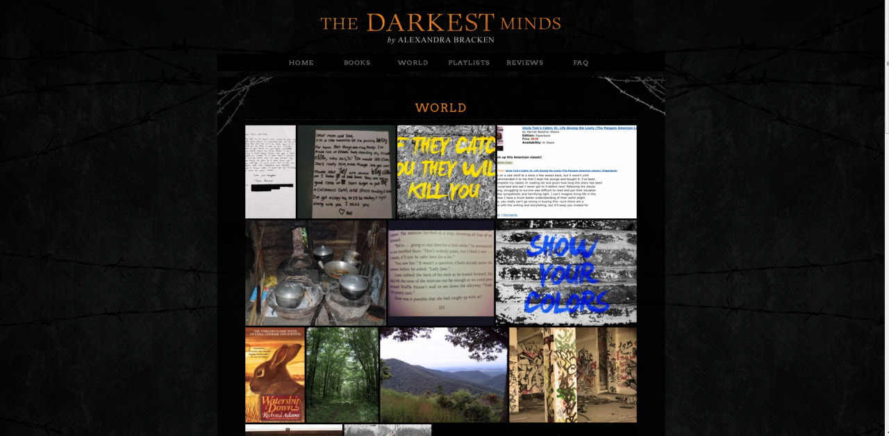 "Hey guys!  Did you know TheDarkestMinds.com exists?  And that there's a very long excerpt of the book on said site? And that there's a neat little Easter Egg of sorts on the front page (hint: radio, double hint: press play), and that both playlists are up on there? And that I've been slowly adding content to what I call the ""World"" page, which gives you a visual look at what their world looks like? Now, I know there are some SUPREMELY crafty types here on Tumblr. If you ever create any original art, or you're interested in contributing to the page either through a letter, a photograph, or manipulating an image (you must own said image or it must be a free stock image), definitely send it to me!  Basically the idea is to put yourself in the place of these kids, or to play around with actual content from the book (like quotes, for instance)I already have a few reader submitted letters up and they are COOL! (Most of them have secret messages embedded in them!)  If you contribute something, I will MAKE SURE you get something in return—and that likely is a shout-out in NEVER FADE's acknowledgments and/or a very early look at NEVER FADE itself. P.S. Those book reviews are actually up on Amazon if you want to look for them. It makes me laugh every time someone finds them ""helpful."" P.P.S. I'm hoping that the Pinterest-like plug-in is eventually updated so that you can reblog the photos onto Tumblr in addition to Twitter and Pinterest and Google+."
