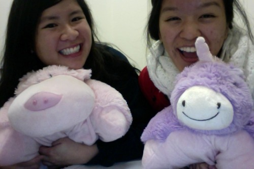 Last week's late-night studying at GP's Harbor Bay campus. Yay roomie Pillow Pets! Meet Gabe and Bernard :) Aaaaand I am logging off of Tumblr now. One more final, which will be done in just a mere 23 hours. One moreee…