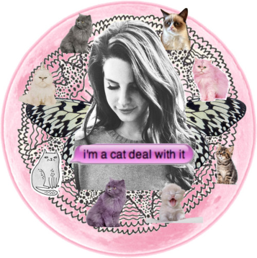 eaudaisie:   i'm a cat deal with it by sashablack on Polyvore Butterfly photo, spring, black and white, wings, botanical gardens,…