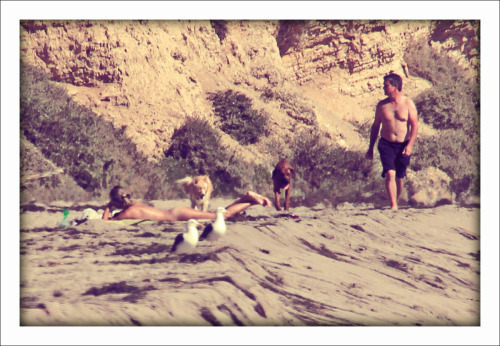 Point Dume, Malibu, CA | September 2012 photographed by maxwelld  {California} ∈ {Candid }