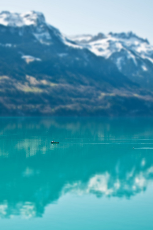 lamescapes:  Dreamy Swiss Lake