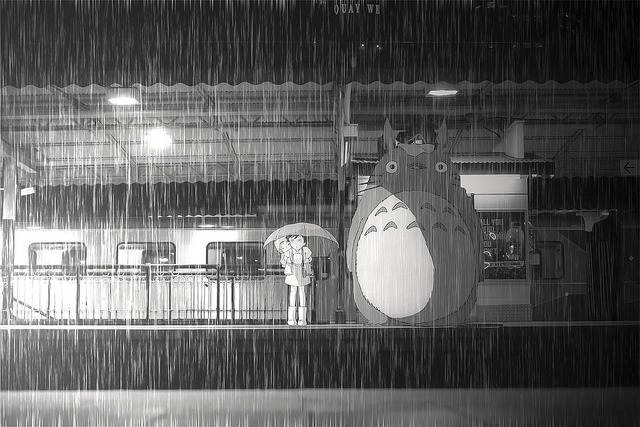 Late night edits. Totoro at Flinders by nardvrnza