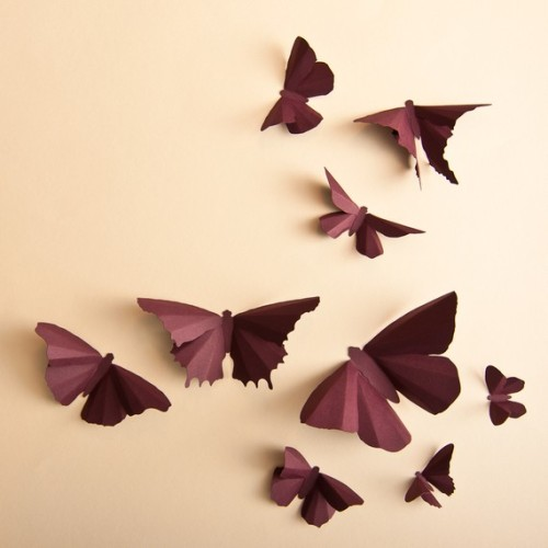 umla:  (via 3D Wall Butterflies 20 Plum Butterfly by hipandclavicle on Etsy)