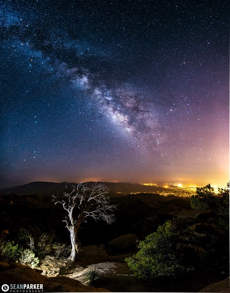 "the-science-llama:  Milky Way Panorama — ""Light""  A vertical 4-photo panoramic showing the milky way rising over the Rincon Mountains in Tucson, Arizona. Photo was taken from Windy Point Vista which is 6,600 feet high on Mt. Lemmon.- Camera Canon EOS 5D Mark II- Shutter Speed 20 sec  By the way, I was totally there on that mountain when he took that photo and got to meet him too. I was just relaxing, watching the Lyrid Meteor shower, definitely a good time."