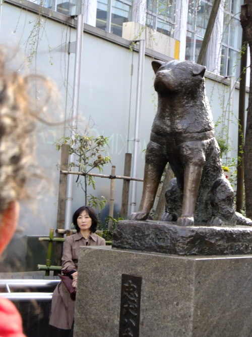 Hachiko 'Forever faithful'