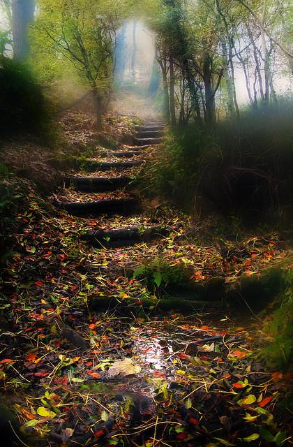 into the mystic, Ireland via pinterest