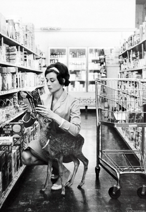 Audrey Hepburn at the market with Ip the fawn, her co-star in Green Mansions. Photographed by Bob Willoughby, 1958