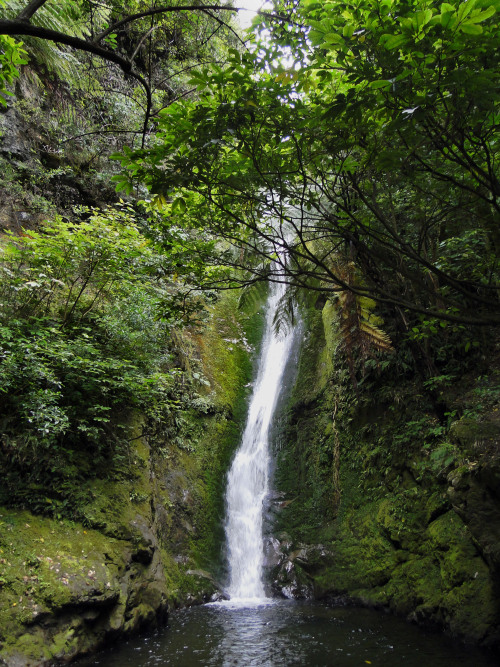abucketfullofdreams:  Oahu Stream Waterfall27km north of Kaikoura New ZealandPhoto By: Monika Libson