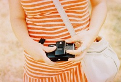 lomographicsociety:  Lomography in Colors - Apricot Peach
