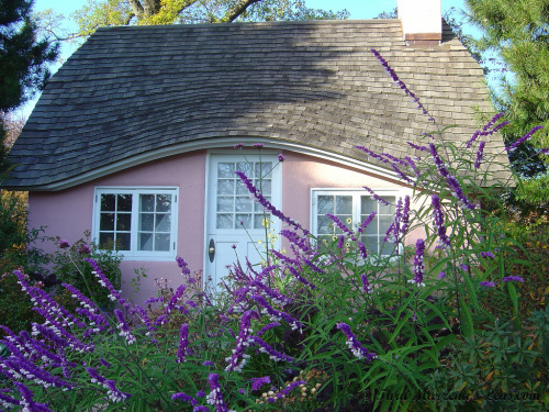Pink Cottage (by www.ThruMarzenasLens.com)