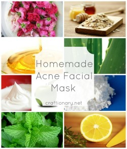 (via Homemade acne facial masks - Craftionary)