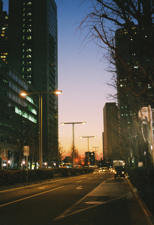 italdred:  Shinjuku Twilight (by Jenmendrstein)