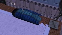 simsgonewrong:  Sleeping bags… you're doing it wrong.