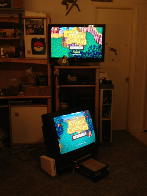 thelegendofdana:  My brother and I know how to play animal crossing the right way.