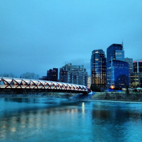 #yyc #calgary #peace #bridge #downtown #river #water (at Peace Bridge)