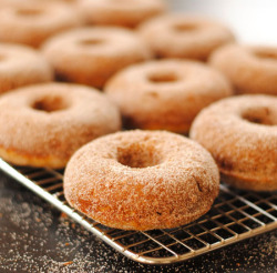 Baked Spiced Apple Doughnuts.