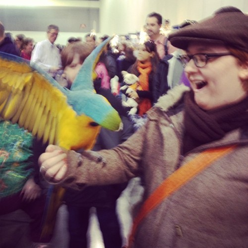 AAAHHH COOLEST #PARROT EVER