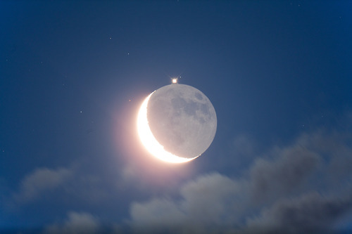 thesciencellama:  Jupiter Occultation Maurice Toet - July 15, 2012