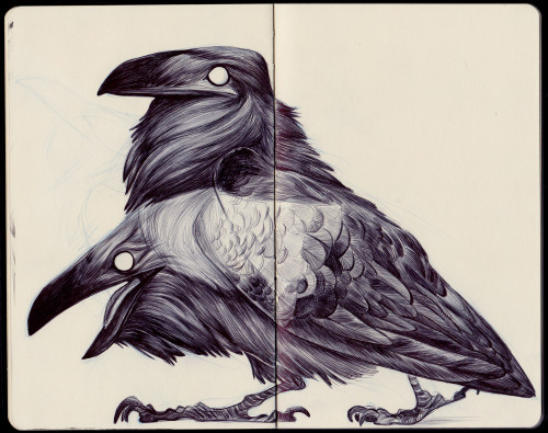 nataliehall:  The True Tongue
