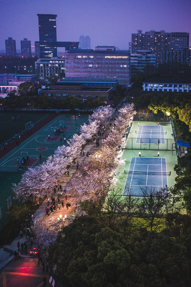 mingsonjia:  上海同济 Shanghai (credits)
