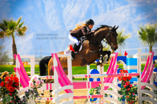 collected-canter:  teachmehowtoequitate:  Helen & Dillinger in the Level 5 jumpers at HITS Thermal V  Helen is literally my idol and Dillion is cooler than raisin bread.  Quinn Saunders 2013 © teachmehowtoequitate.tumblr.com  that background though wow